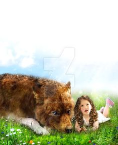 jake and ness manip. Ness and Wolf Jake Twilight Wolf, Twilight Saga, Twilight Pics, Jacob And Renesmee, Twilight Breaking Dawn, The Cullen, Jacob Black, Harry Potter, Cinema