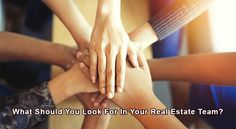 What Should You Look For In Your Real Estate Team? - Pineapple Homes LLC