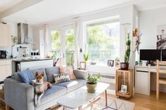 This Brooklyn Rental makes apartment living look both minimal and homey. A small space with big windows lets in lots of natural light to show of the great colorful style.