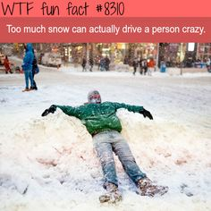 Too much snow will make you crazy  WTF fun facts