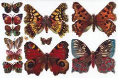 Victorian Die Cuts Butterfly Wings Scraps