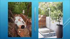 Image result for outdoor shower ideas