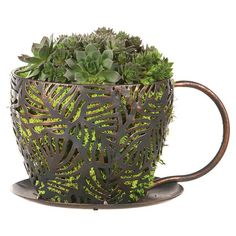 Showcasing an openwork coffee cup design, this imaginative metal planter delights whether in the sunroom or nestled in your garden.   ...