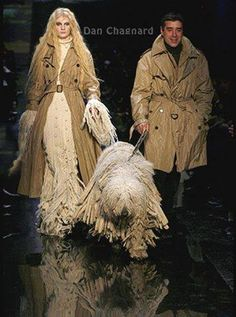Komondor in a fashion show...