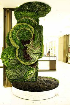 Now this is crazy!!  Azuma Makamoto plant arrangement
