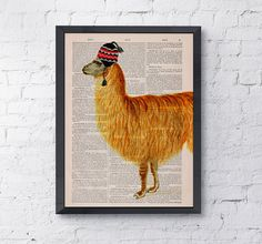 Vintage book print Traveler  llama Print on Vintage Book page- LLama with funny hat - Nursery wall art funny animal prints BPAN167