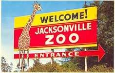 This postcard shows a sign pointing to the entrance of the Jacksonville, Florida Zoo. Jacksonville Zoo, Drive In Theater, Florida Living, Vintage Photography, So Little Time, Wonderful Places, Summer Fun, Memories