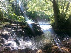 Río Ega- Acedo