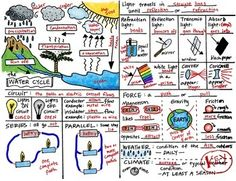 Science Concepts STAAR Review Test Prep Part Two by Science Doodles