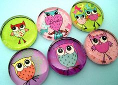Owl Magnets Inch Circle Glass Set of Six by StuckTogetherMagnets, $9.85