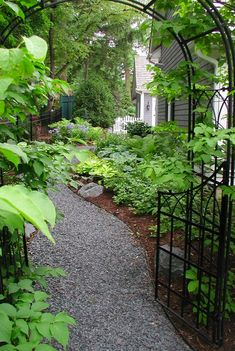 Attractive garden walkway in Naperville, Illinois • design / photo: Naperville Landscape Architects & Landscape Designers /  Western DuPage Landscaping, Inc. on The Impatient Gardener