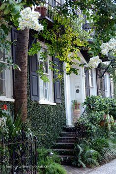 Charleston, South Carolina home Charleston Caroline Du Sud, Historic Charleston Sc, Charleston Gardens, Charleston Style, Charleston Homes, Charleston South Carolina, Southern Homes, Southern Style, Southern Charm