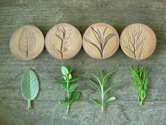 Stoneware Herb Magnets on NS Pottery. These look imprinted, very nice!
