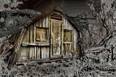 Etude # 160329dsc0123.Small будинок в лісі.  - Фото © 2016 з Юрій Бишів -
