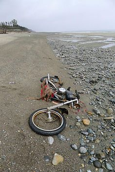"""Japanese """"Harley-Davidson"""" found on Canada beach after tsunami. A motorbike which was thought to be long lost to the Japanese tsunami last year, was found washed up on the coast of British Columbia. Cool Motorcycles, Vintage Motorcycles, Harley Davidson Motorcycles, Indian Motorcycles, Bobber Bikes, Tsunami, Abandoned Cars, Abandoned Places, Style Cafe Racer"""