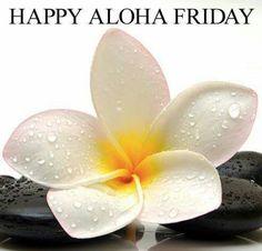 Happy aloha Friday! All About Hawaii, Hawaii Outfits, Aloha Friday, Aloha Shirt, Tropical Plants, Planting Flowers, Backdrops, Flora, Happy