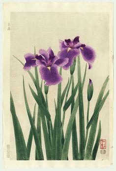 Iris by Nisaburo Ito (1910 – 1988)