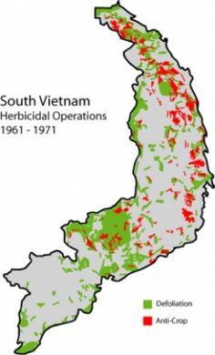 Agent Orange was used by the U.S. military from 1961 to 1971 in Vietnam. The herbicide was used to defoliate inland and coastal forests, cultivated land, and areas around military bases during the Vietnam conflict.  The long term health effects of...