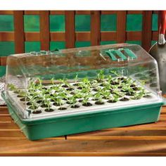 Park's Original Bio Dome 60 Cell Seed Starter: When we say that this seed-starting system from Europe is revolutionary, we really mean it! Now you can start your favorite vegetables and flowers indoors, for earlier crops at a fraction of the cost of buying plants. And you can select the varieties YOU want (not the half-dozen choices the local garden center picked out), confident that with Park's Bio Dome, your seeds will sprout and your sprouts will transplant easily into the garden!