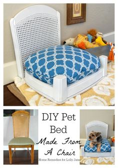Thrift store chair redone into pet bed.  Blog: Home Remedies