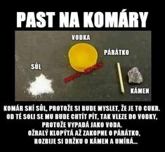 To sa mi v lete zíde Funny Images, Funny Pictures, Some Jokes, Weird Words, Funny Pins, Man Humor, Funny People, Memes, Funny Animals