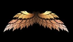 Golden Angel Wings.