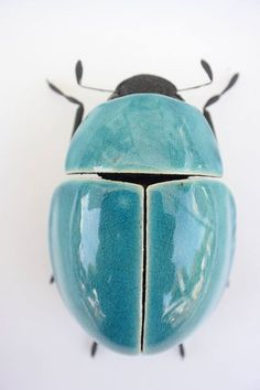 Ross De Wayne / Ceramics in Berlin // Weevil / beautiful bugs made from ce . Ross De Wayne / Keramik in Berlin // Weevil / beautiful bugs made from ceramic, clay, metal / www. Cool Insects, Bugs And Insects, Ceramic Animals, Ceramic Art, Ceramic Bowls, Cool Bugs, Bug Art, Insect Art, Insect Crafts