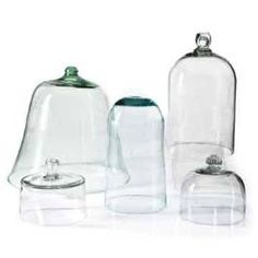 Glass Cloches -