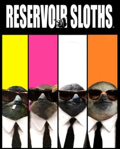 Reservoir Sloths - Look for on from November! Cute Sloth Pictures, Baby Sloth, Art Thou, Animal Crackers, My Soulmate, My Spirit Animal, Make Me Smile, Elephant, Sloths