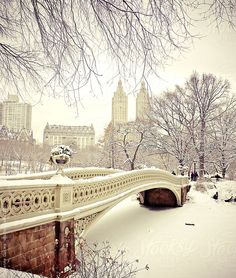 Beautiful New York Winter Scene in Central Park - Snow-covered Bow Bridge by Vivienne Gucwa