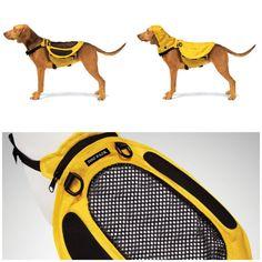 Mochilas - alforjas para perros. Funcionales y decorativas