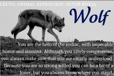 Scorpio...Wolf -- You are the hero of the zodiac, with impeccable honor & stamina. Although you rarely compromise, you always make sure that you are clearly understood. Because you are so strong willed you can be a bit of a loner, but you always know where you stand.