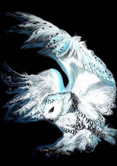 Snowy Owl by Hayloumac on DeviantArt Owl Photos, Owl Pictures, Snowy Owl, Owl Bird, Bird Art, Pet Birds, Owl Tattoo Drawings, Tattoo Owl, Arte Do Harry Potter