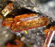Raspite. Broken Hill Proprietary Mine, Broken Hill, Yancowinna Co., New South Wales, Australien; FOV=3 mm Photo Christian Rewitzer