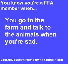 Animals are the best therapists around :)  When I worked at the farm, if I was having a bad day I'd go snuggle a baby or visit with one of my favorite does.