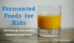 Fermented Orange Juice - more kid-friendly fermented foods ideas
