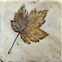 Maple leaf imprint ceramic tile.