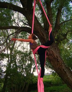 Take an aerial silks class with Jamie (although the tree thing is super cool as well!)