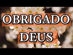 MENSAGEM DE REFLEXÃO GOSPEL - DEUS É PODEROSO - Mensagem pessoas especiais - Vídeo para WhatsApp - YouTube