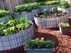 Two Men and a Little Farm: ROUND RAISED BEDS, INSPIRATION THURSDAY