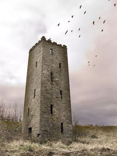Abode Of Crow (by SteveFE) Scariff Tower, County Clare, Ireland