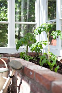 Greenhouse Designs: Tips on picking the very best Design for Your Garden – Greenhouse Design Ideas Greenhouse Shed, Greenhouse Gardening, Landscape Design, Garden Design, Garden Structures, Garden Stones, Green Garden, Plantation, Garden Inspiration