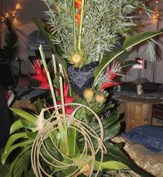 """This Auction Fundraiser """"Jamboree Roundup"""" was held by Carden Academy, an independent school in Maui."""