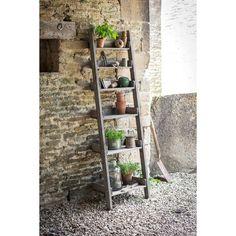 raw oak shelf ladder by garden selections | notonthehighstreet.com