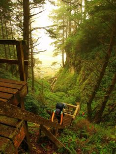 The 50 best hikes in the world (according to this website)