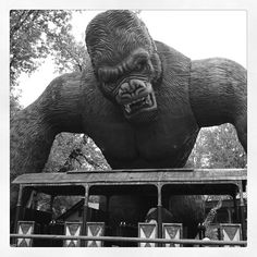 King-Kong, on my visit to Bobbejaanland