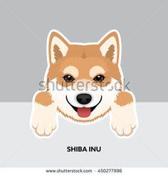 Vector Illustration Portrait of Shiba Inu Puppy. Dog isolated