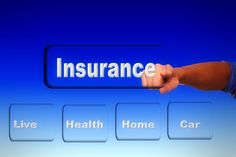 what are the most profitable niches insurance