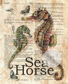 "Sea Horse   7"" x 9"" Mixed Media Drawing on Children's Dictionary    I have been having fun creating all sorts of new images on dictionary..."