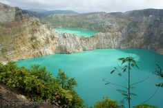 Blue and green lake, Tiwu Nua Muri Kooh Tai (lake of boys and girls) and Tiwu Ata Polo (enchanted lake), Kelimutu volcano, Flores Island, Indonesia